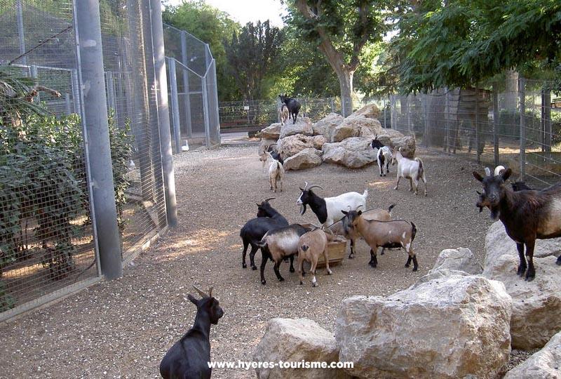 Promenade dans le parc zoologique Olbius Riquier