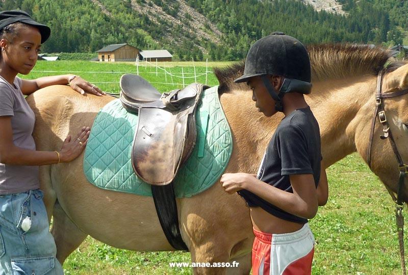 Activité équitation