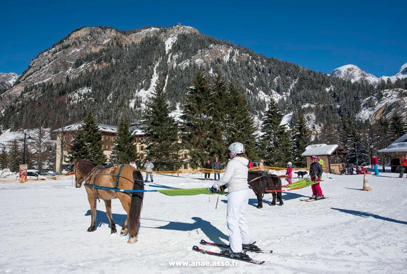 Activité ski joering