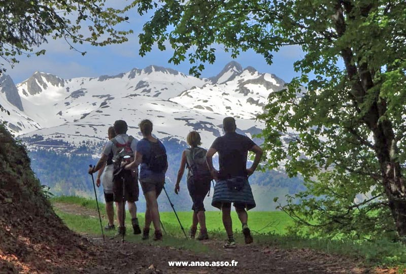 Groupe d'amis en train de randonner à la montagne
