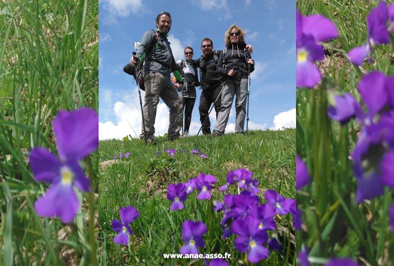 Randonnée entre amis dans un champs fleuri
